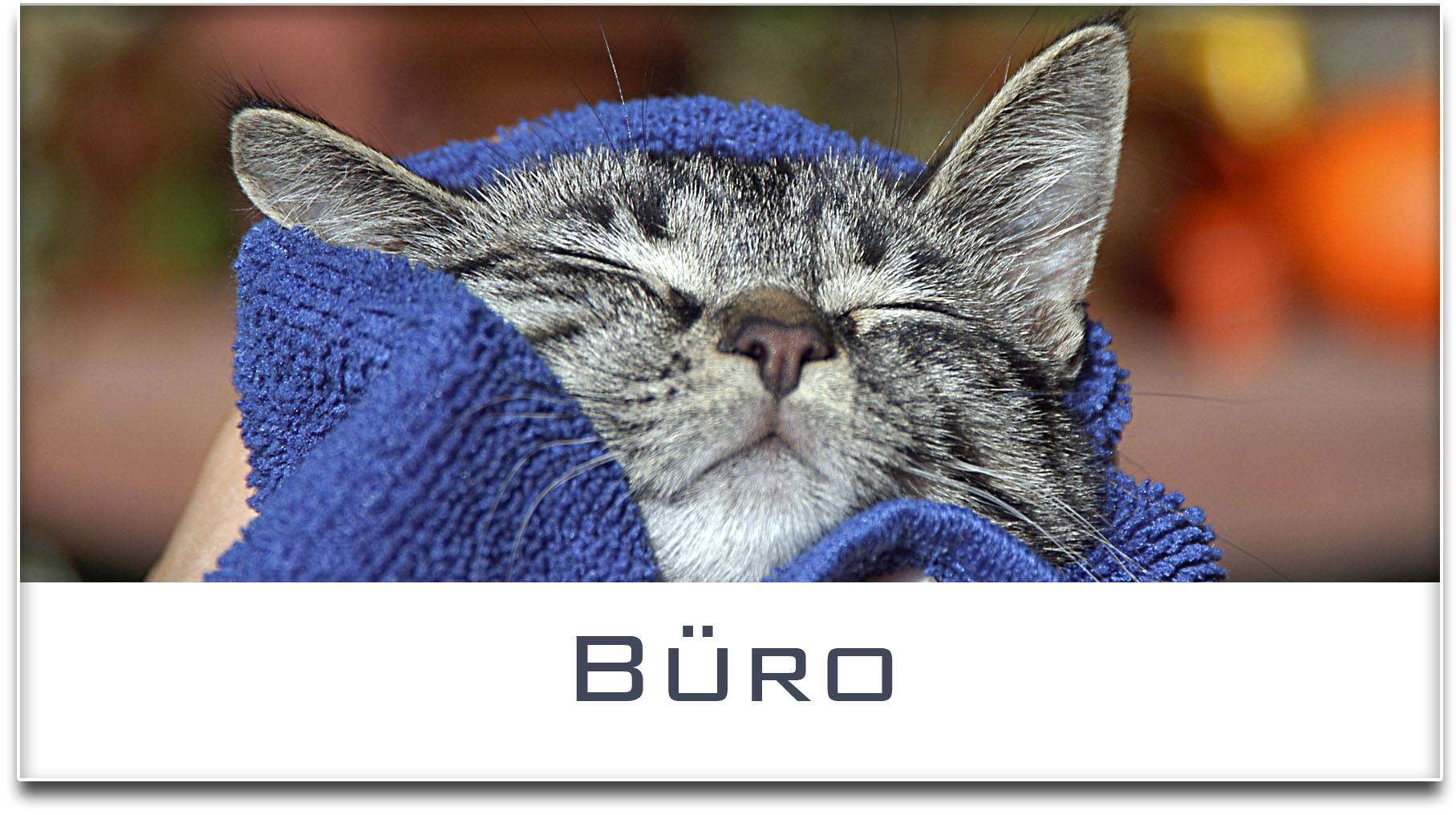 Türschild / Haustürschild / Katze / Büro / Selbstklebend