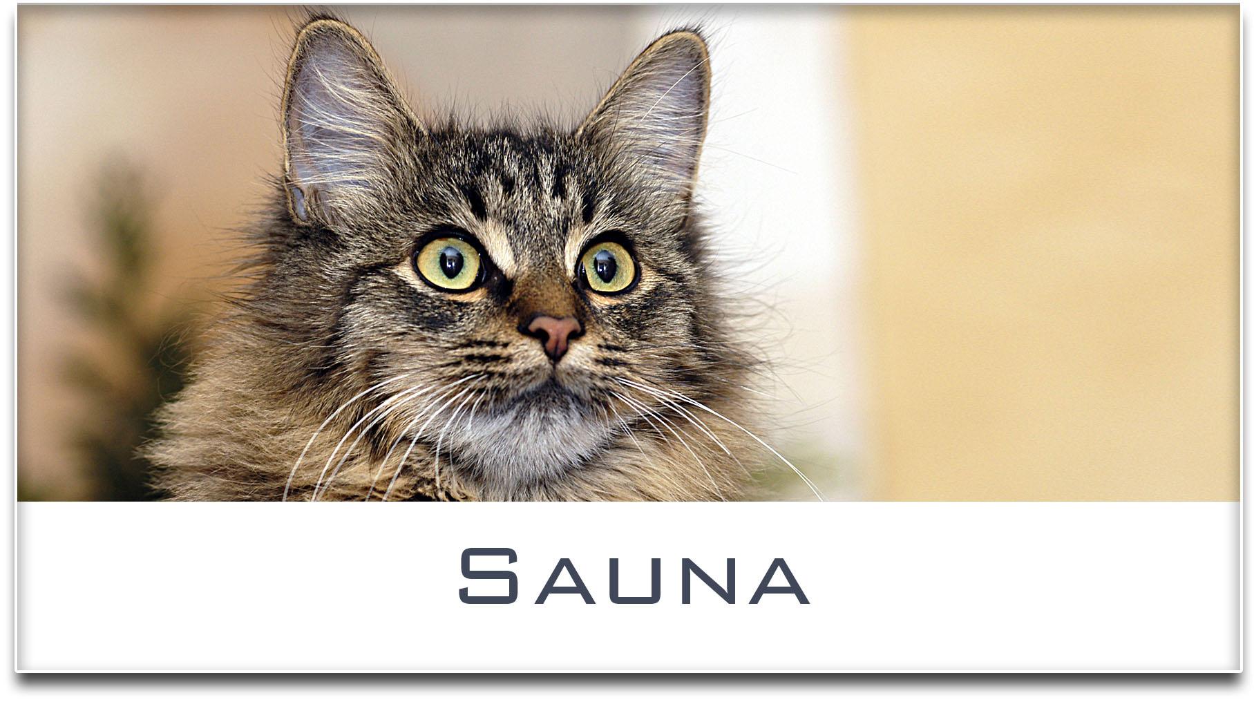 Türschild / Haustürschild / Katze / Sauna / Selbstklebend