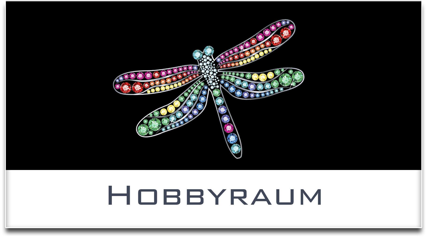 Türschild / Haustürschild / Libelle / Hobbyraum / Selbstklebend