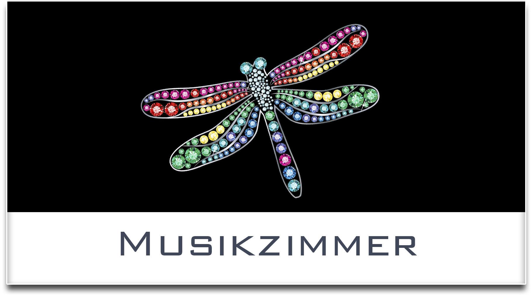 Türschild / Haustürschild / Libelle / Musikzimmer / Selbstklebend