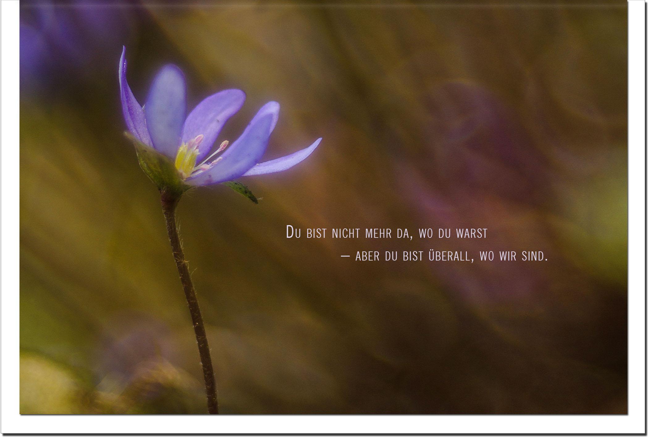 Trauer Trauerkarten Kondolenzkarten / Blaue Blume / Stilvoll Niveauvoll Einfühlsam