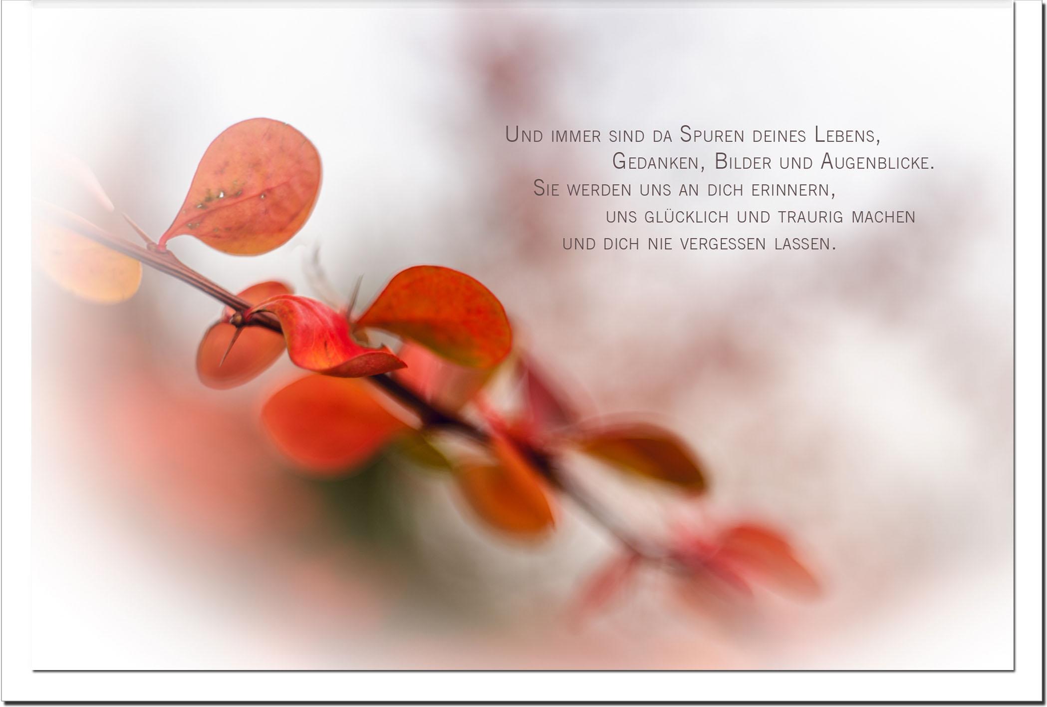 Trauer Trauerkarten Kondolenzkarten / Herbst / Stilvoll Niveauvoll Einfühlsam