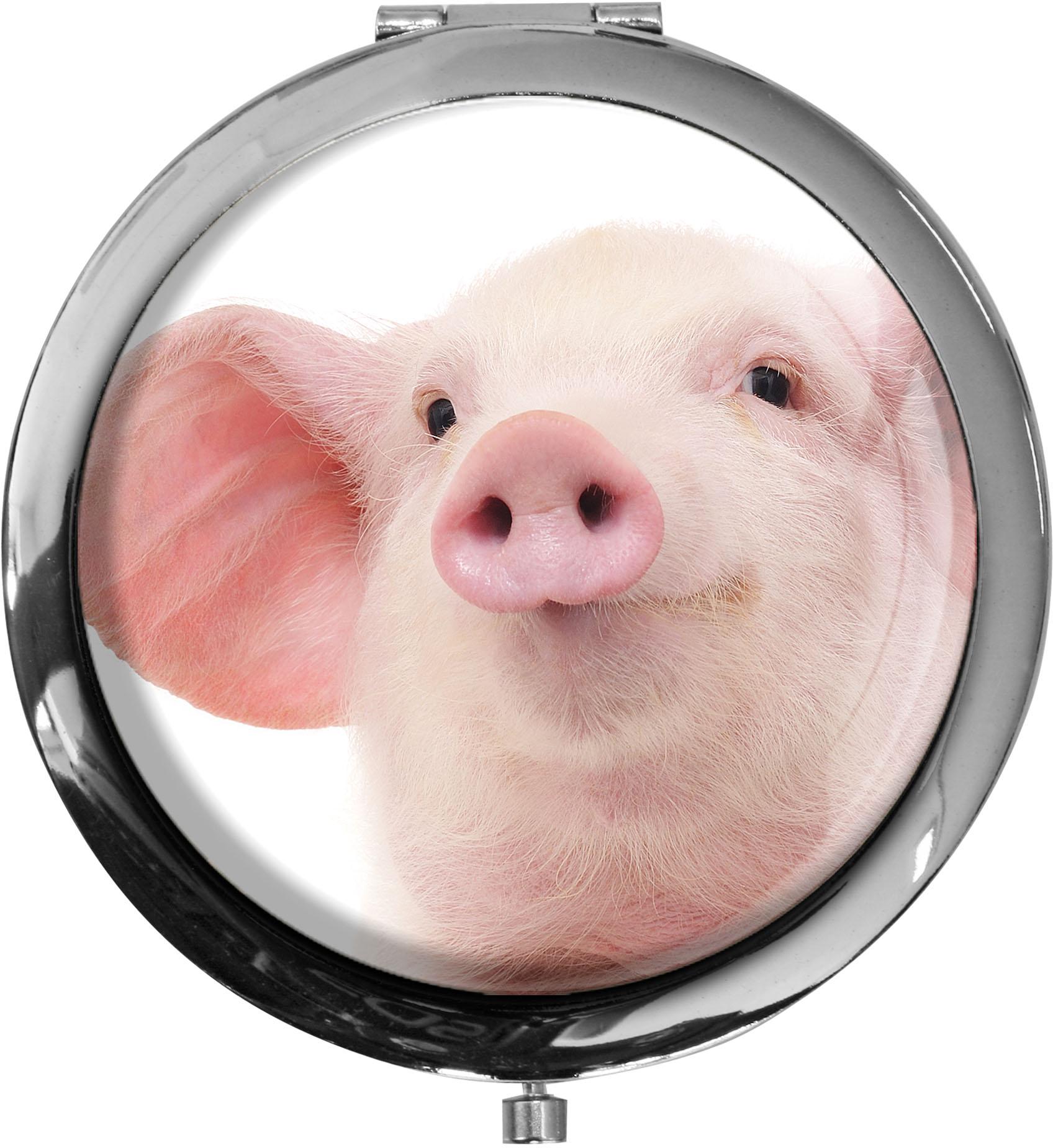 Taschenspiegel / Spiegel / Schwein