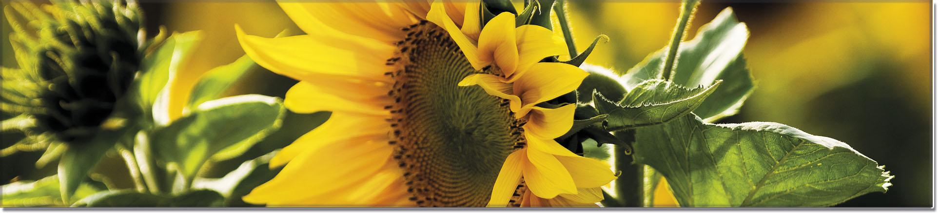 """Metall - Lesezeichen  """"Sonnenblume"""""""