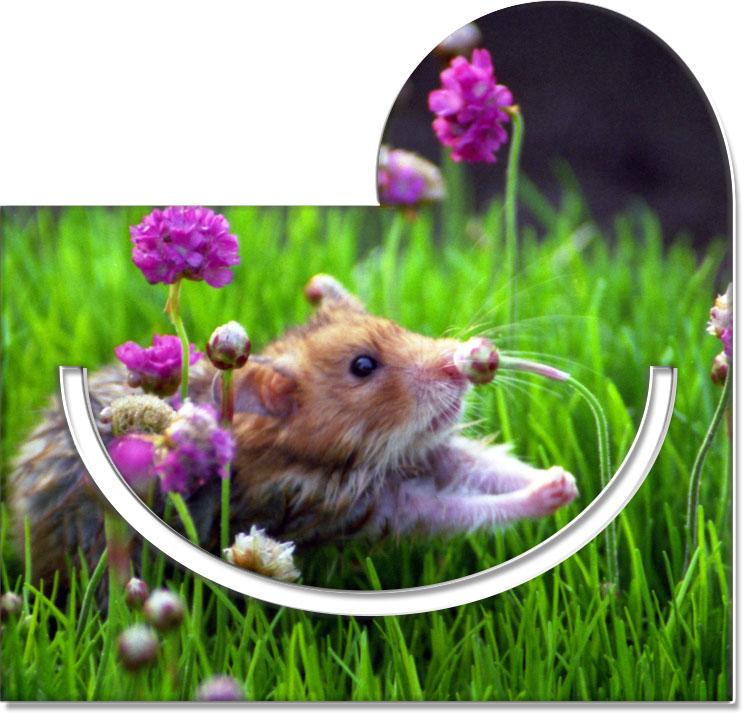 """Metall - Lesezeichen  """"Hamster"""""""