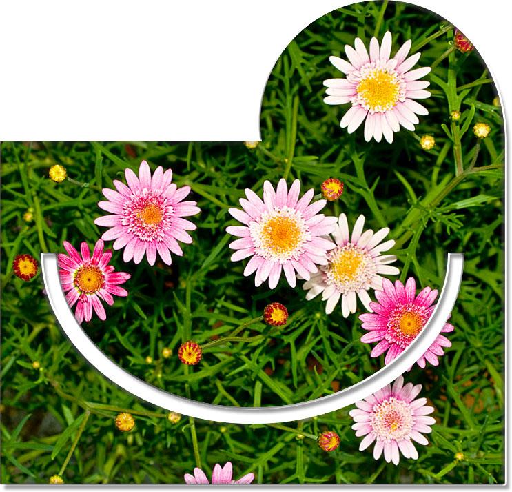"Metall - Lesezeichen  ""Blüten"""