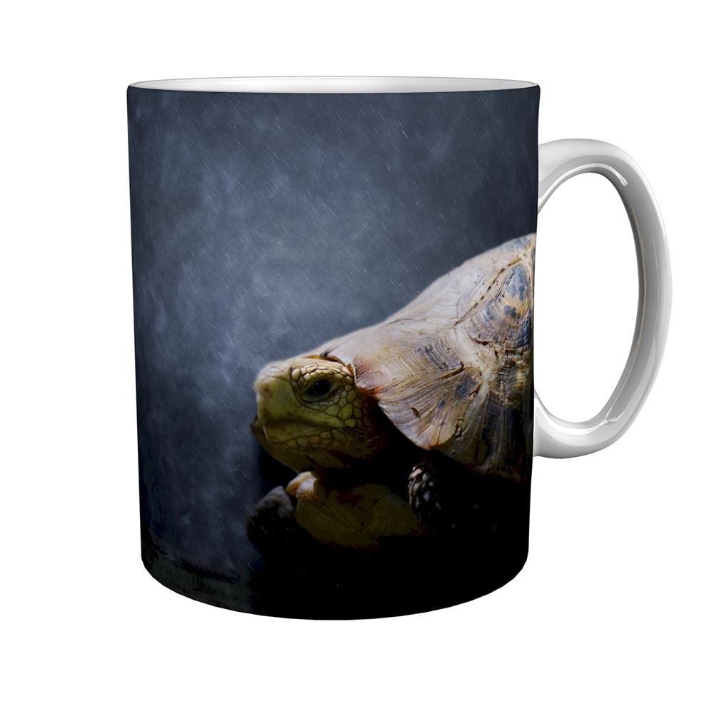 Kaffeetasse / Kaffeebecher / Schildkröten / Geschenktasse