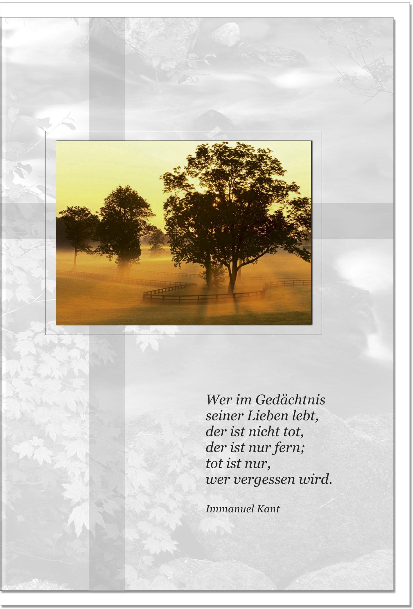 Trauerkarte Beileidskarte / Bäume