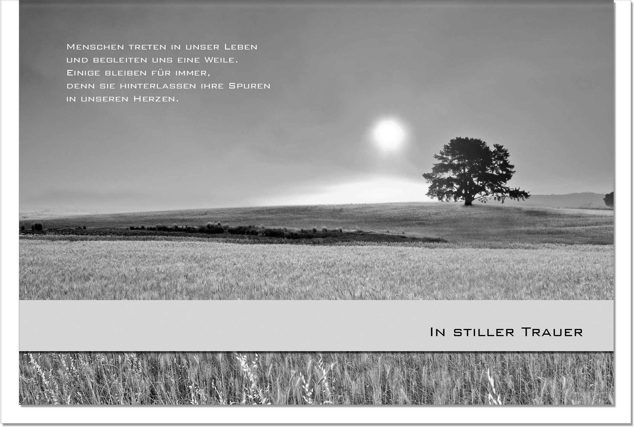 Trauerkarte Beileidskarte / Kornfeld