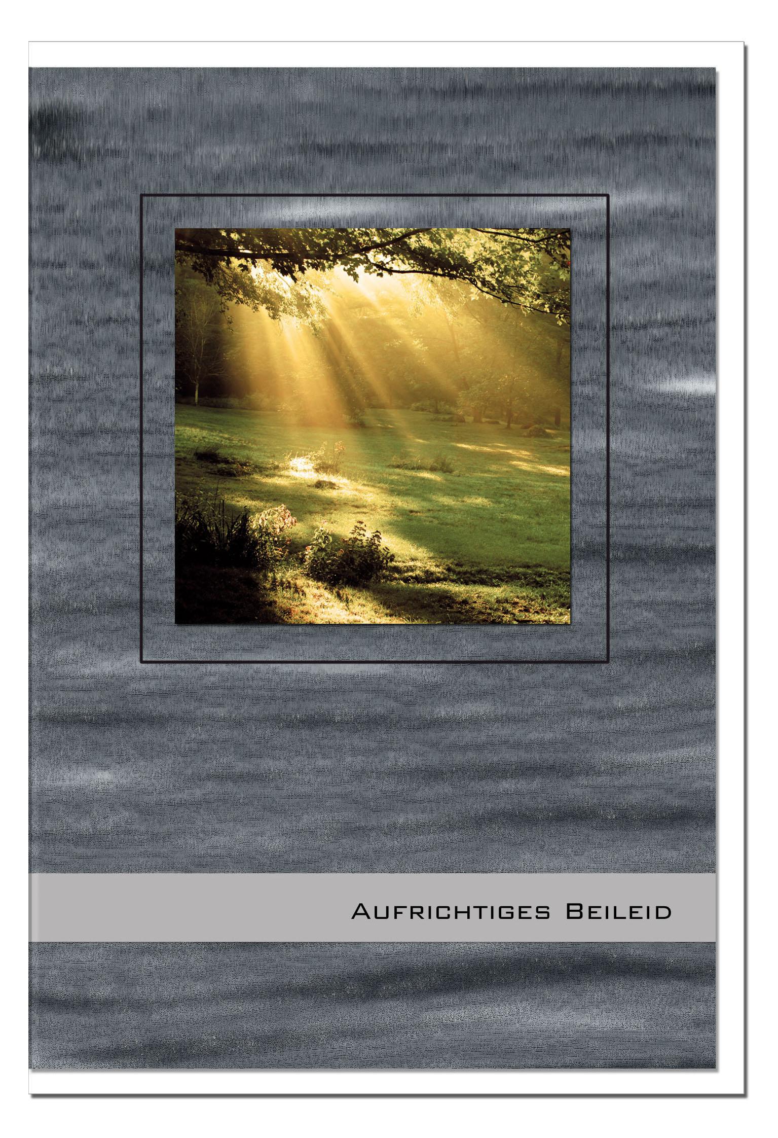 Trauerkarte Beileidskarte / Sonnenstrahlen