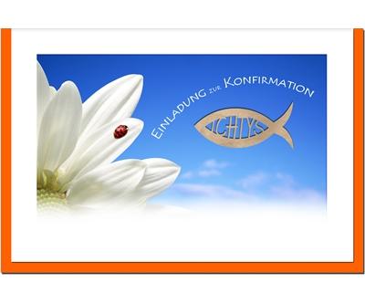 MetALUm Einladungskarten zur Konfirmation (50 er Set)  Marienkäfer    Online-Exportgeschäft    Louis, ausführlich